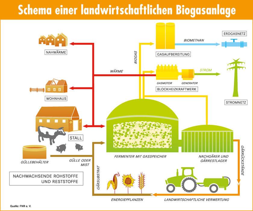 Grafik Biogas
